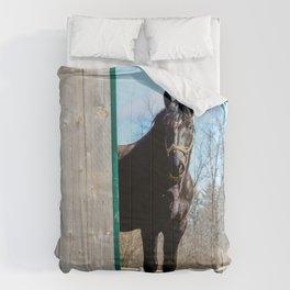 Percheron Horse by Teresa Thompson Comforters