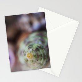 Macro Shell Stationery Cards