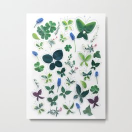 Nature Butterfly Pattern 1 Metal Print