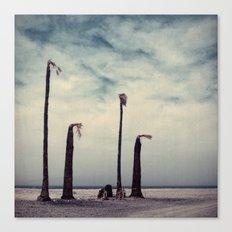 Salton Sea, California Canvas Print