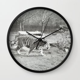 On the prowl... Wall Clock