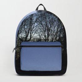 Vigeland park Backpack