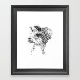 Wooly Llama Framed Art Print