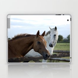 Two horses by a gate Laptop & iPad Skin