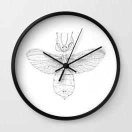 Phyllidae Wall Clock