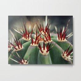 Cactus Details Metal Print