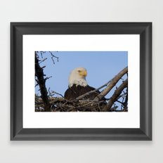 Eagle's Nest Framed Art Print