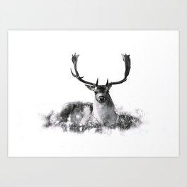 Majestic Stag Art Print