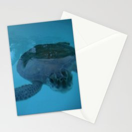 Nosey photo bomb Stationery Cards