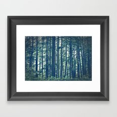 See the Forest for the Trees Framed Art Print