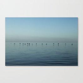 In Flight (Color) Canvas Print