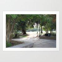 Path/Trees/Park Art Print