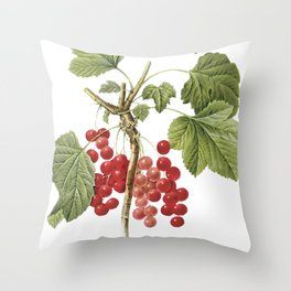 Botanical Print, Red Currant, Ribes Rubrum Throw Pillow