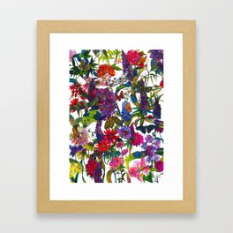Botanical Butterflies Framed Art Print
