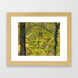 Turning Leaves Framed Art Print