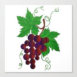 Purple Grapes on vine Canvas Print