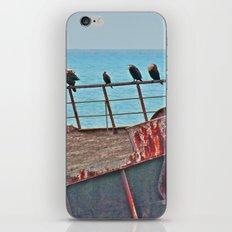 Cormorants Rest iPhone & iPod Skin