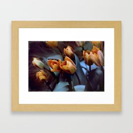 Tulips with Attitude Framed Art Print