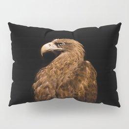 Aquila chrysaetos Golden eagle Pillow Sham