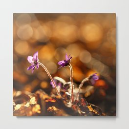 Wonderful Moment In Forest Springtime #decor #society6 Metal Print