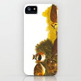 Shore Lark Bird iPhone Case