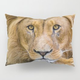 Eyes of the King of the Jungle Pillow Sham