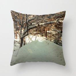 Snowshoeing through Vaughan's Woods Throw Pillow