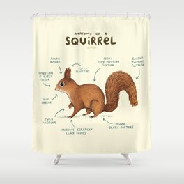 Anatomy of a Squirrel Shower Curtain