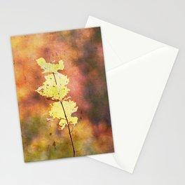 Seasonal Closeup - Autumn Stationery Cards