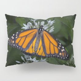 Monarch Butterfly Gathering Nectar Pillow Sham