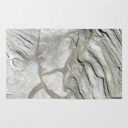Bay of Fundy Rock No.1 | Texture | Nadia Bonello | Canada Rug