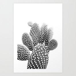 Bunny Ears CactusPhotography B&W Art Print