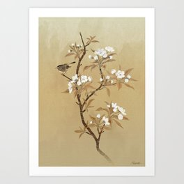 White Pear Blossoms And Sparrow Art Print