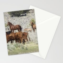 Meeting of the Herds Stationery Cards