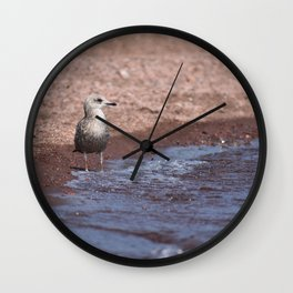 Gull in the Waves Wall Clock