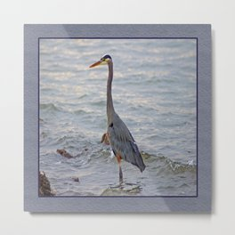 still here wading (square) Metal Print