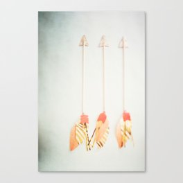 Arrows of a Feather Canvas Print