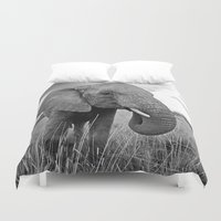 south africa Duvet Covers featuring African Elephant, South Africa by Shannon Wild