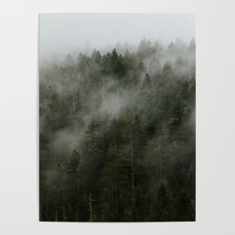 Pacific Northwest Foggy Forest Poster