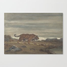 Vintage Illustration of a Striped Tiger (1875) Canvas Print