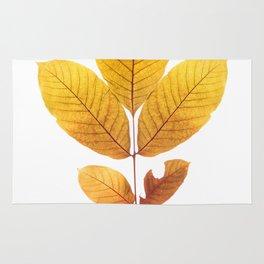 Dried walnut leaf Rug