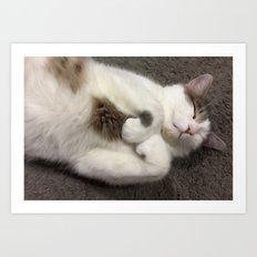 Sleepy Time Art Print