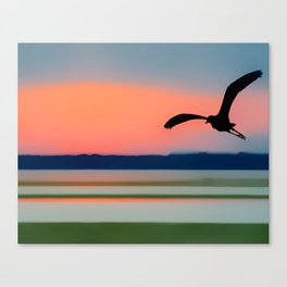 Seagull Sunset Abstract Canvas Print