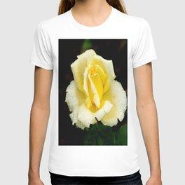 Rosa Eternal Flame Rose T-shirt