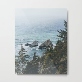Pacific Northwest Metal Print