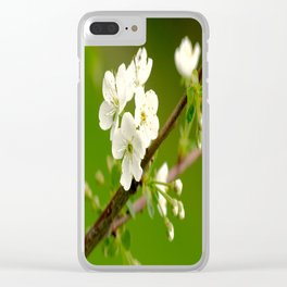 Cherry Tree Branch With White Flowers #decor #society6 Clear iPhone Case