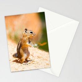Tired Chipmunk Stationery Cards