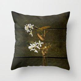 Shadbush Flowers Throw Pillow