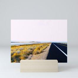 Along the Salt Flats Mini Art Print