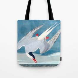 Arctic Tern James Audubon Vintage Scientific Illustration American Birds Tote Bag